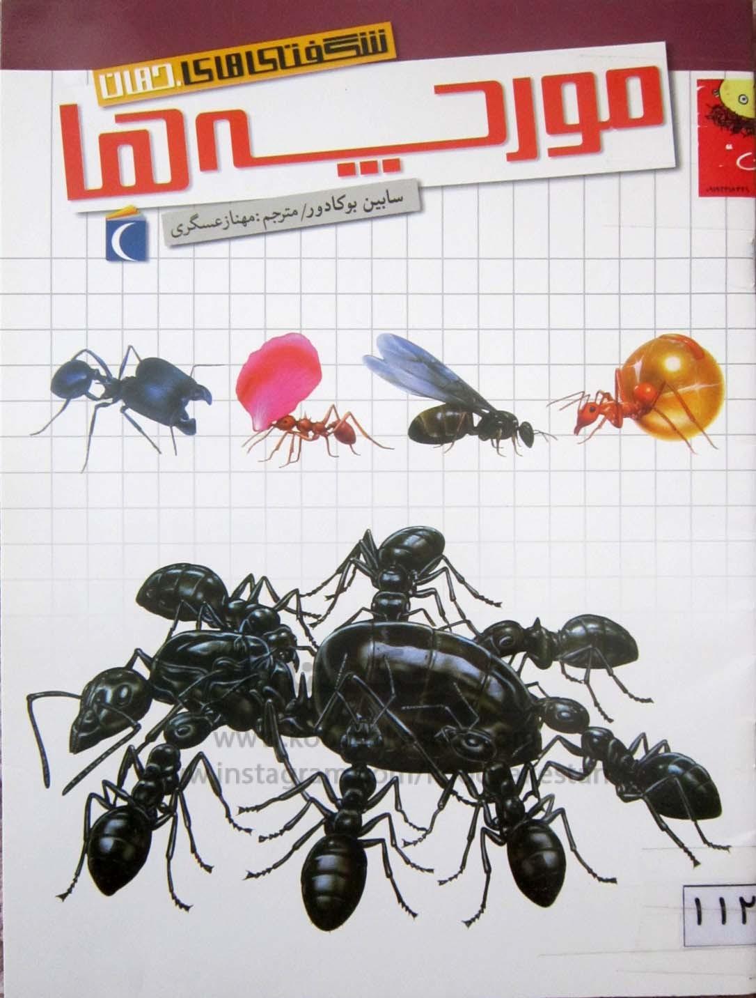 مورچه ها - کتابخانه کودک - کوچکستان